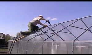 Покрытие теплицы поликарбонатом